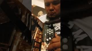 ando bien gerrado Ortiz - Omar Ruiz  accordeon