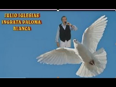 GEORGE BAKER - PALOMA BLANCA LYRICS