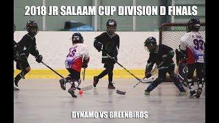 2018 Jr Division D Salaam Cup Finals: Dynamo vs Greenbirds