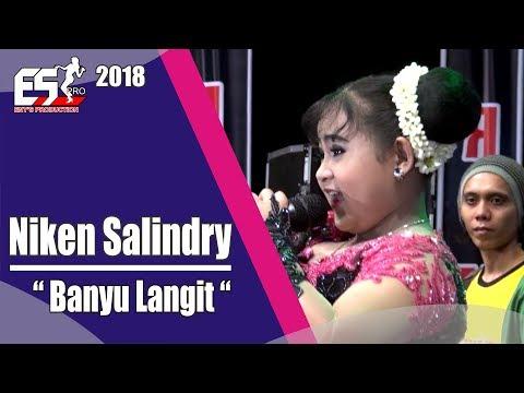 Niken Salindry - Banyu Langit [OFFICIAL]