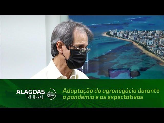 Adaptação do agronegócio durante a pandemia e as expectativas para 2021