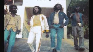 "Wailing Souls - Fire House Rock (12"" mix)"