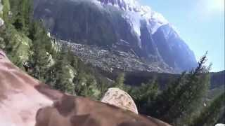 White-tailed Eagle POV flight - Chamonix, Mont Blanc