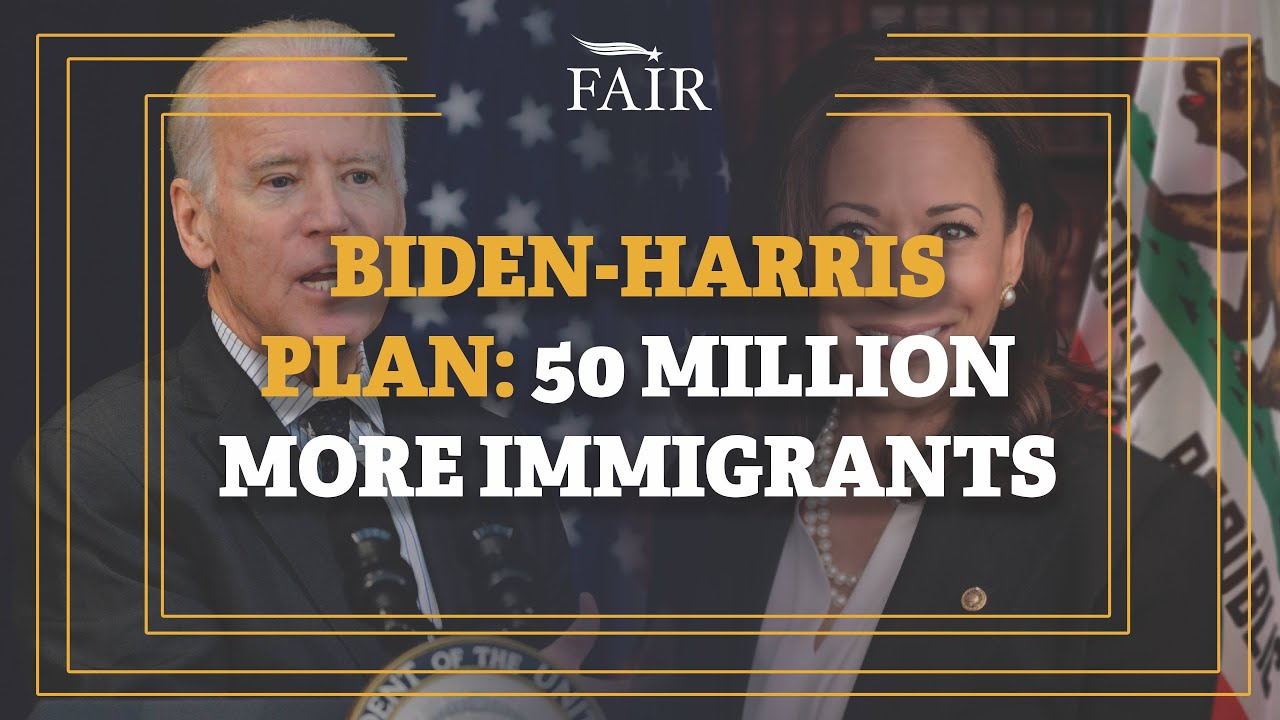 Biden administration: Harris to play lead immigration role
