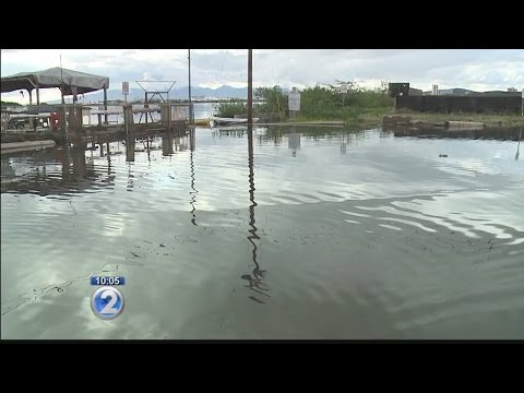 Could perfect storm of high tides, rain, rising sea levels bring unprecedented flooding?
