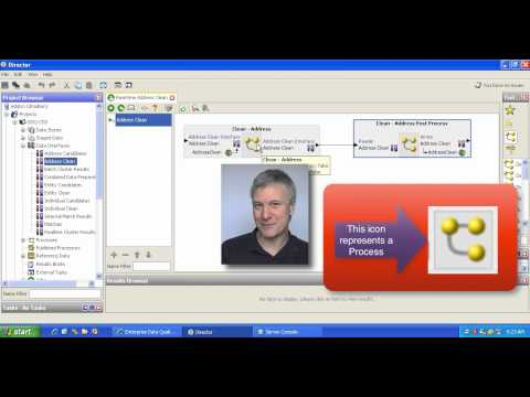 Oracle Enterprise Data Quality: CDS - Tailor an Address Clean Service