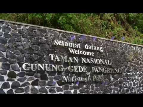 Indonesia travel : Mount Gede Pangrango National Park, Spectacular panorama in Bogor  012