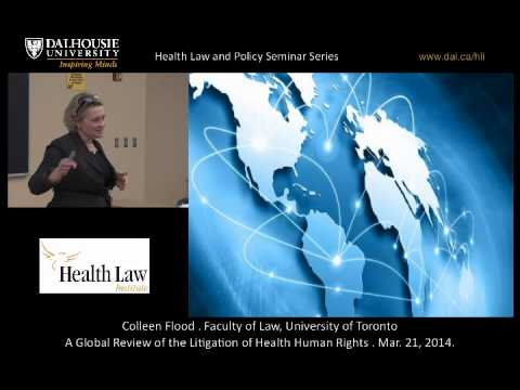 A Global Review of the Litigation of Health Human Rights