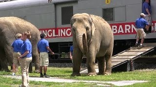 Ringling Brothers Circus Train and Animal Walk at Hershey