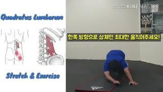 척추측만증 자세교정 운동
