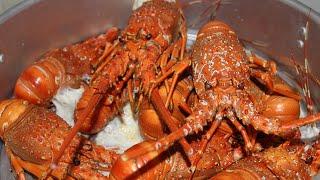 HTB 272 ll ĂN LỄ CẢ NHÀ ĂN 10 CON TÔM HÙM HẤP (Steamed lobster)