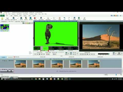 Videopad Video Editor Software | Green Screen Tutorial
