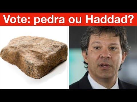 O que pode tirar a eleição do Bolsonaro? Enquete: Vote na pedra ou no Haddad?