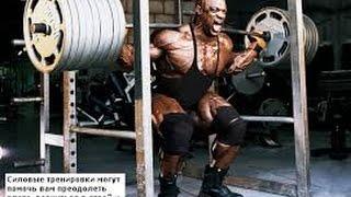 Самые сильные атлеты Animal Gym Ялта(В этом видео мы покажем одних из самых сильных атлетов которые занимаются в нашем зале, в месте с нами и..., 2017-01-05T19:56:07.000Z)