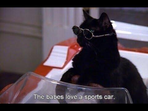 Сериал кот салем