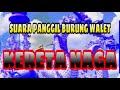 Sp Walet Kereta Naga  Mp3 - Mp4 Download