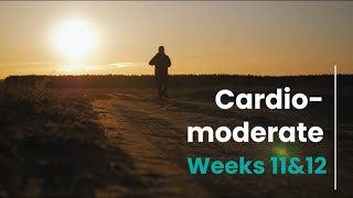 Cardio Moderate Prescription - Week 11&12 (Control)