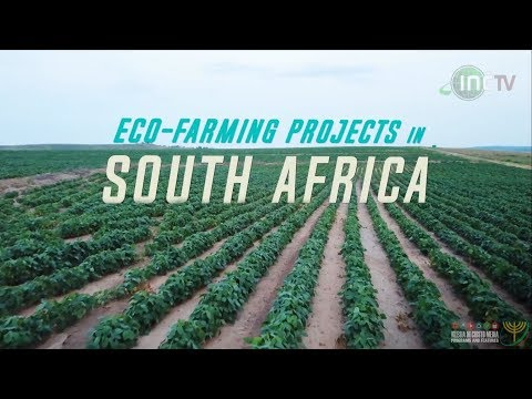Eco-Farming Projects in South Africa