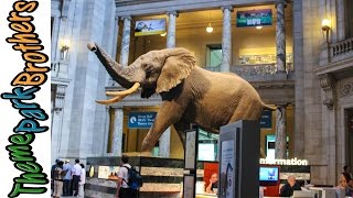 Smithsonian National Museum of Natural History Washington DC