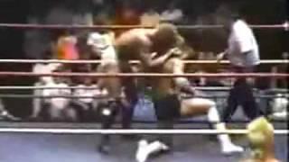 Scott Hall vs.  Sid Vicious