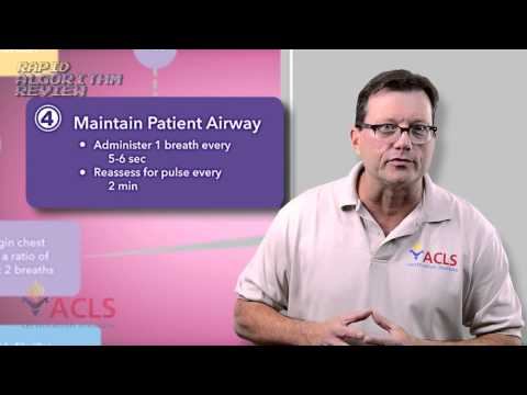 Rapid Algorithm Review Basic Life Support by ACLS Certification Institute