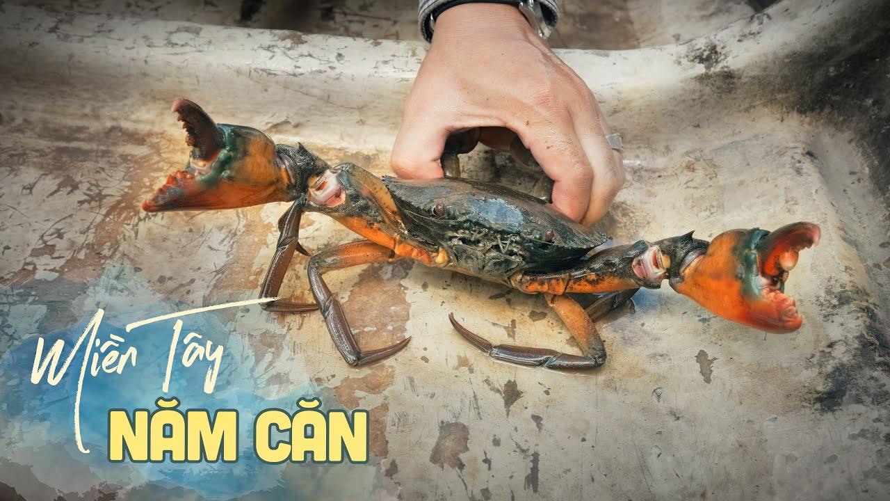 Cuộc sống Năm Căn: Cua, ba khía ăn hoài riết ngán |Du lịch ẩm thực Miền Tây Việt Nam