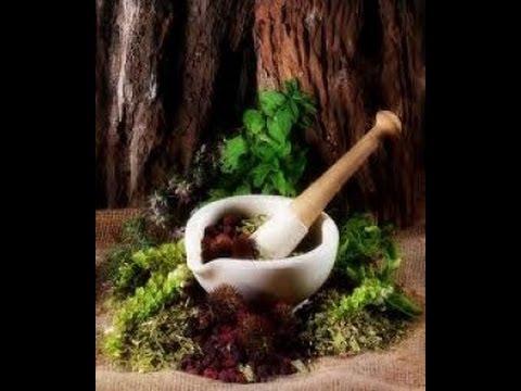 Herbal Medicine vs. Antibiotics
