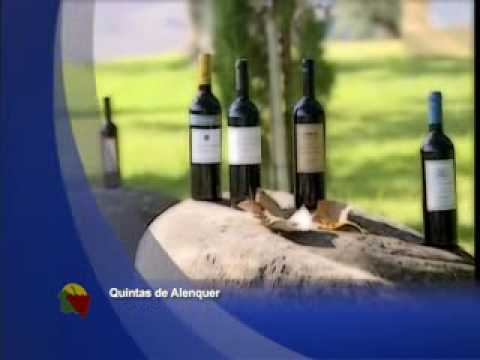 Promotional video from #Residencial Dom Carlos's website