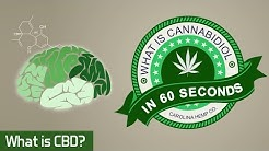 What is CBD? In 60 Seconds (Cannabidiol)