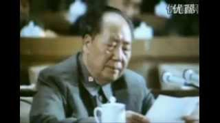 Mao Zedong's Speech at the 9th National Congress of  the Communist Party of China