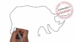 Как нарисовать носорога карандашом