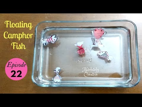 Floating Fishes Using Camphor | Episode 22 (Craft Project) | SUMMER CAMP FOR KIDS 2018