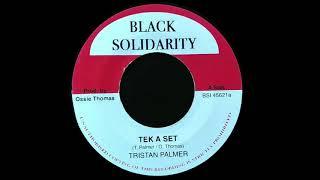 TRISTAN PALMER - Tek A Set (1984) Black Solidarity