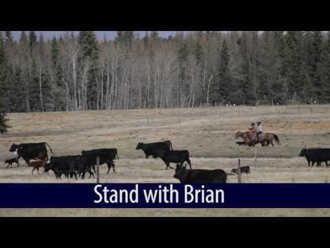 Help Brian Jean fix equalization