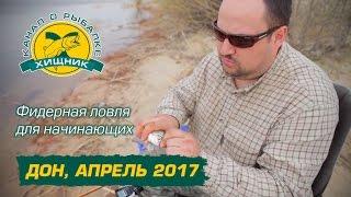 Фидерная ловля для начинающих. Дон, апрель 2017.