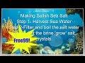 Making Salish Sea Salt From Scratch     Free 99 Ingredients    Jentle Soaps™
