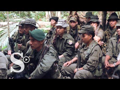 En las entrañas del bloque oriental de las FARC