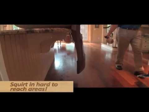 How to Clean and Care for Hardwood Floors | City Floor Supply