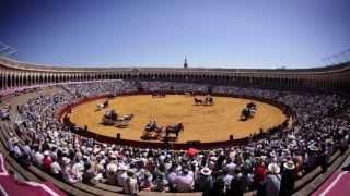 Exhibición de Enganches de la Feria de Abril de Sevilla #FeriaSevilla14