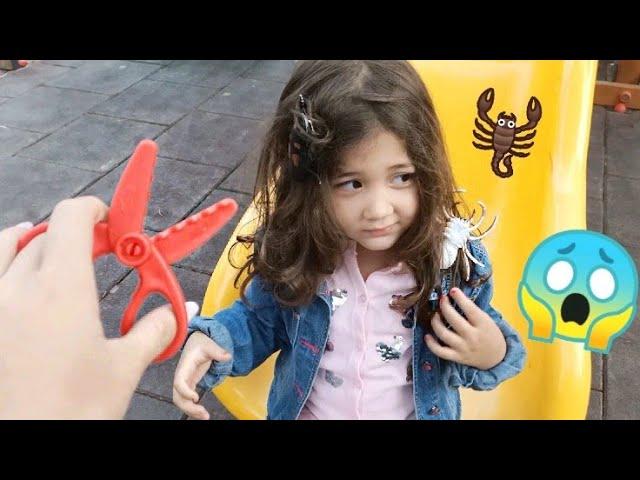 Eylül abla أفضل سلسلة قصص تربوية وأخلاقية للأطفال