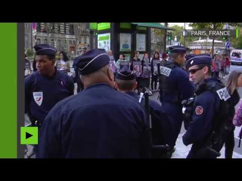 Vegan impact : les vegans manifestent en plein centre de Paris