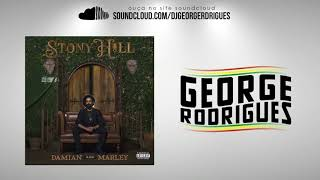Damian Marley - The Struggle Discontinues