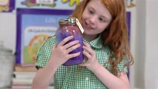 Click here to play the YPO Create and Make Dream Jars video