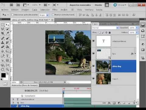 Crear Transparencias Entre Capa En Video Con Photoshop Parte 1 Youtube