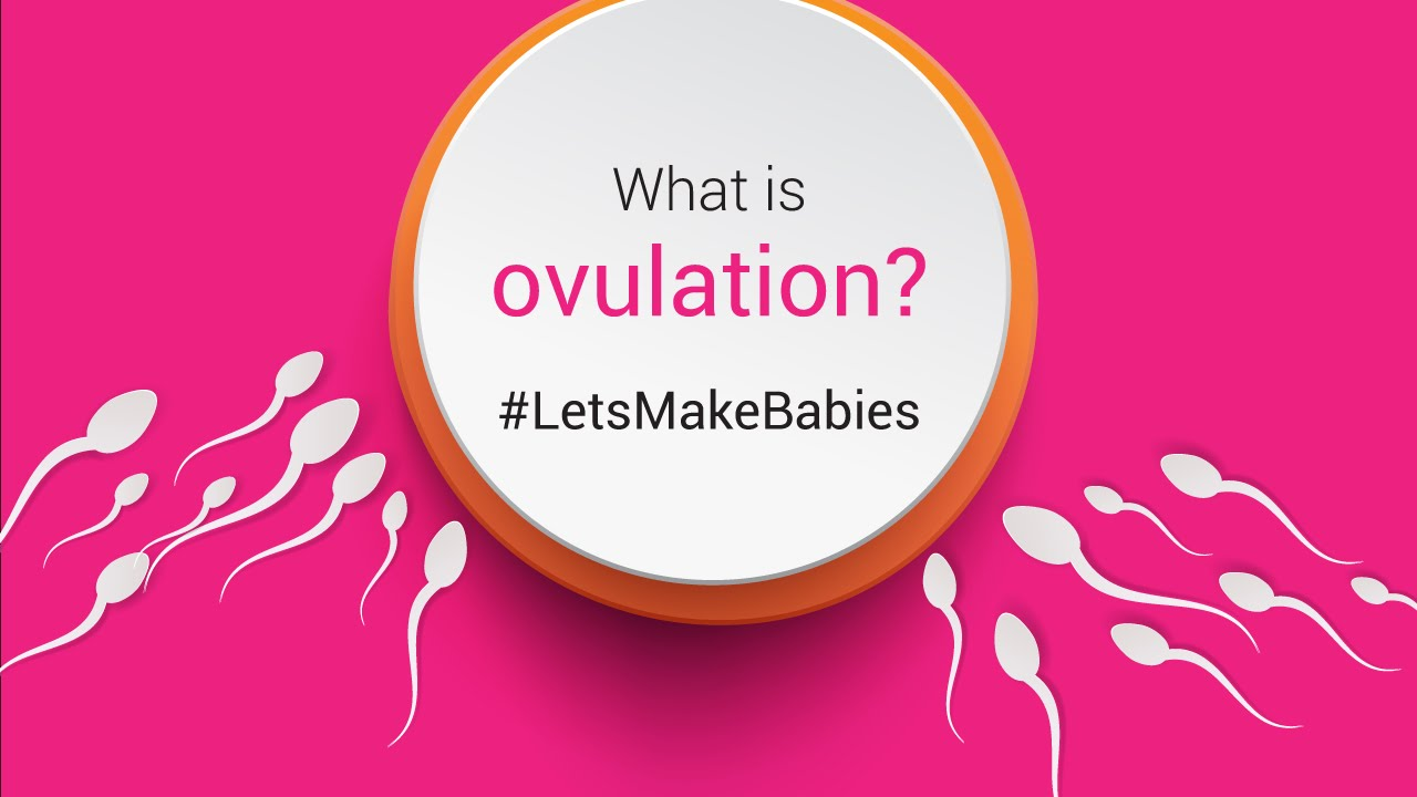 i-know | Do you know what is Ovulation?