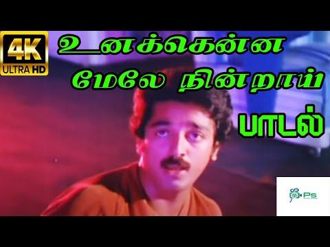 உனக்கென்ன மேலே நின்றாய் |Unakkenna Mele Nindrai |SP Balasubramaniam H D Melody Song