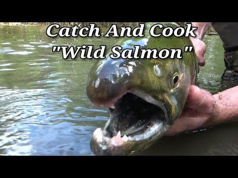 Survival Fishing - Catch Clean and Cook Salmon Stream Side!