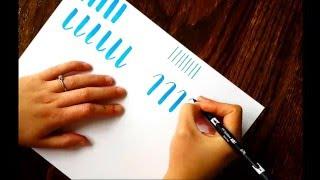 The Beginner's Guide to Brush Lettering: Basic Strokes
