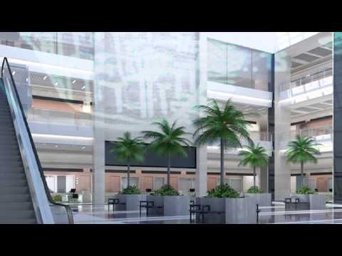 猫 シ Corp. - A1 - Palm Mall