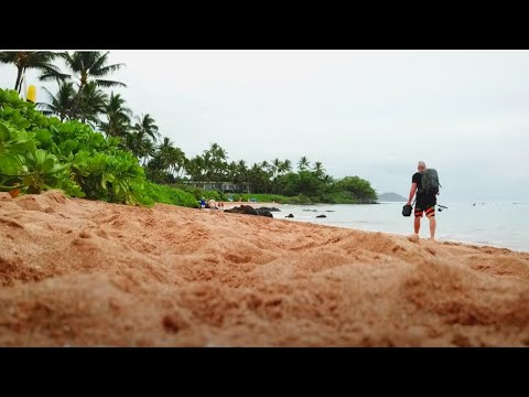 Catch N' Cook Tropical Reef Fish In Hawaii   Ace Videos